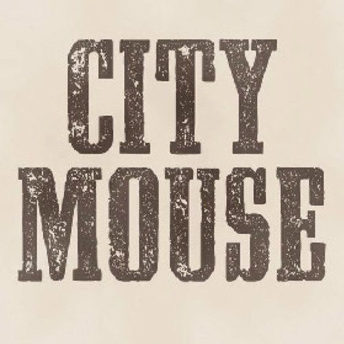 Small city mouse
